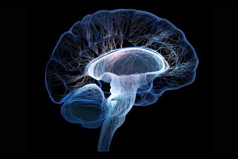 Diferencias Esclerosis Múltiple y ELA
