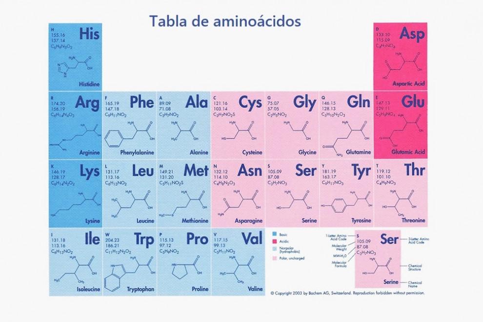 Tabla de aminoácidos