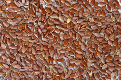 Semillas de lino: 12 propiedades y beneficios