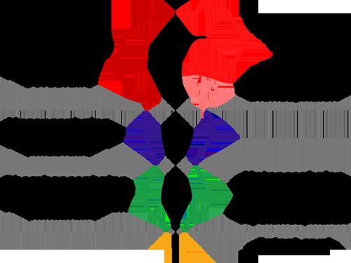 Diagrama procencéfalo