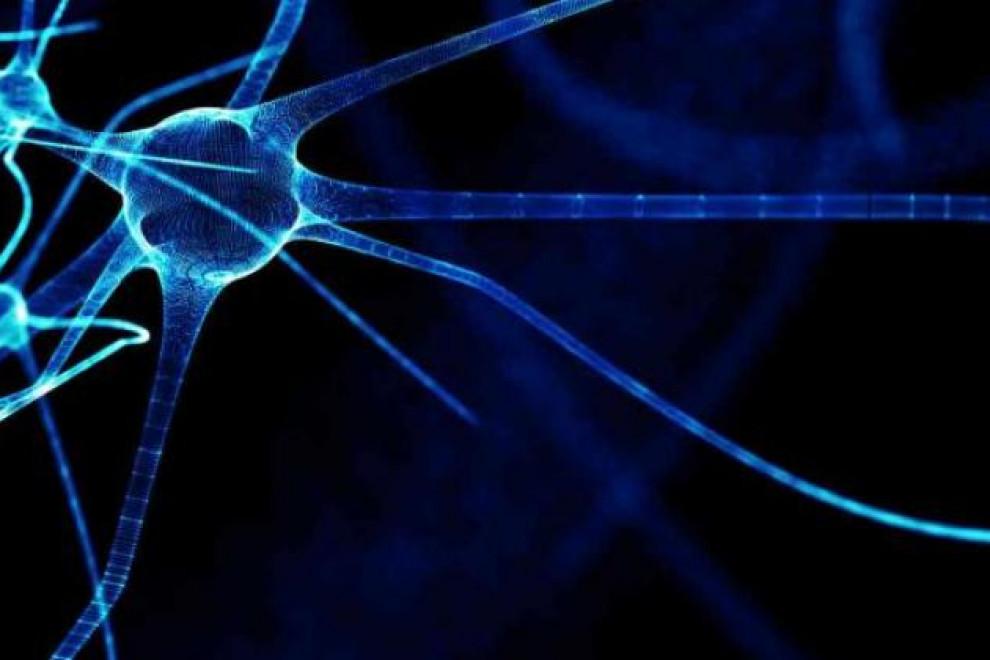 Deterioro Cognitivo por Esclerosis Múltiple