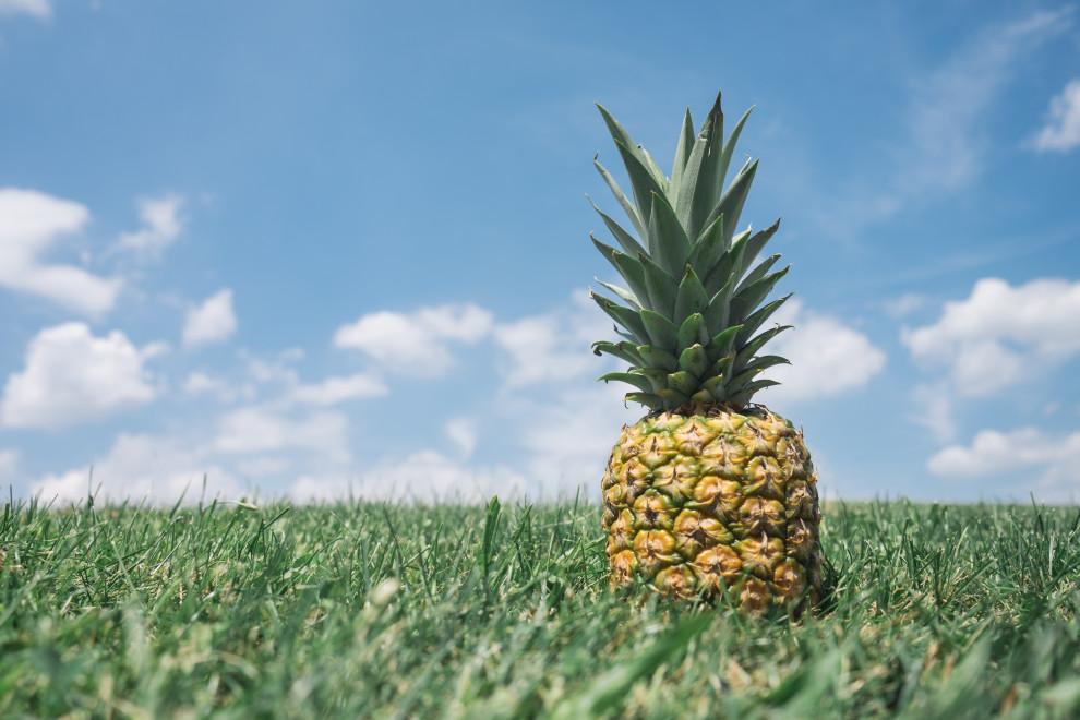 Piña: 10 beneficios y propiedades de esta fruta tropical