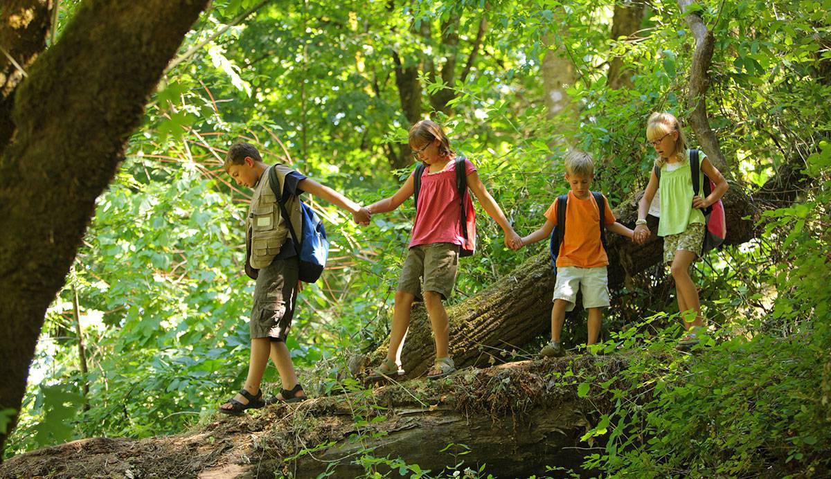 Niños bosque