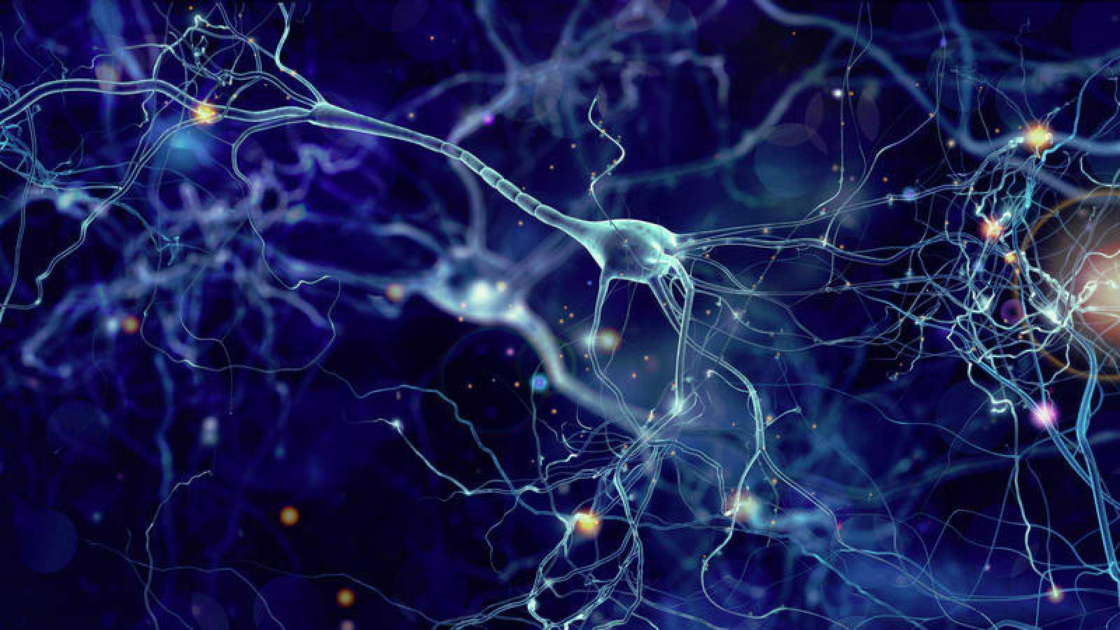 Sinapsis dendritas