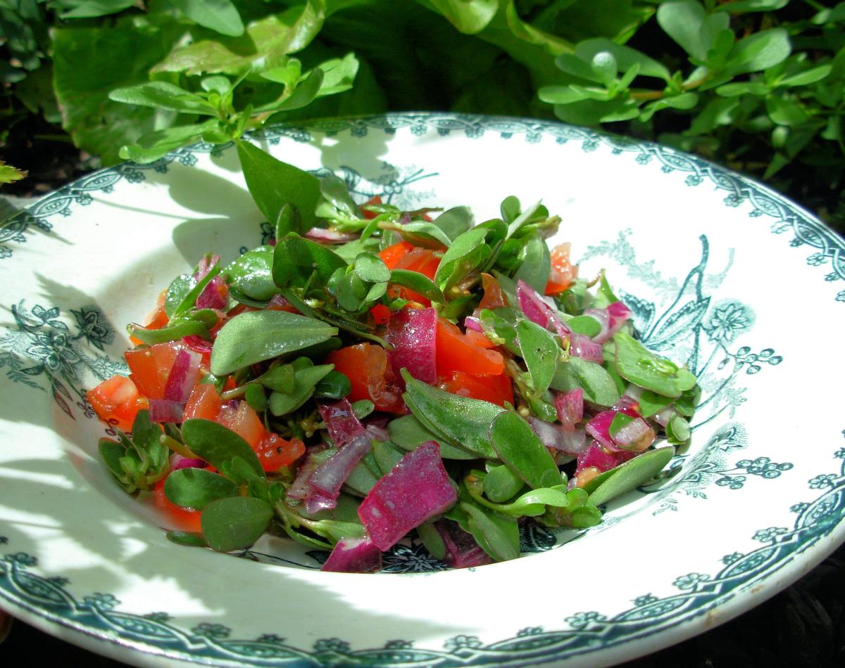 Verdolaga ensalada