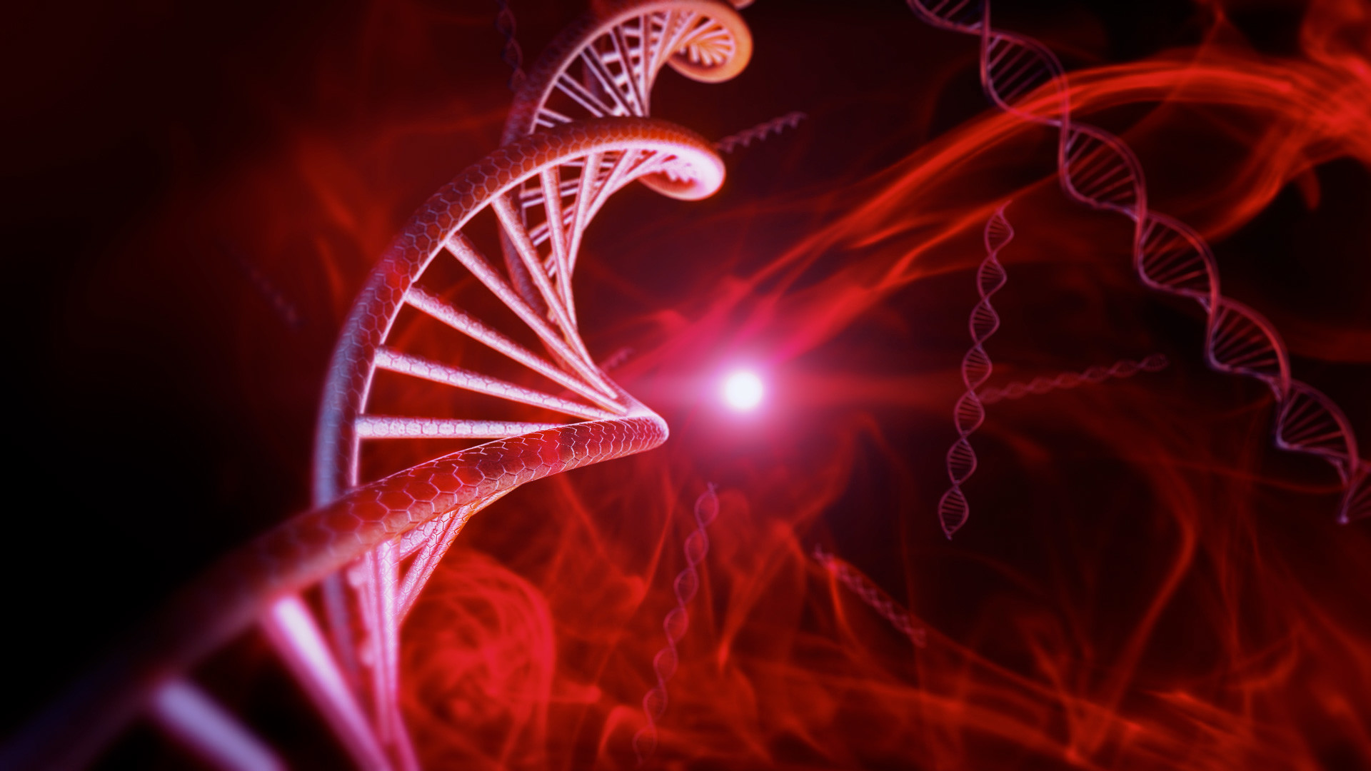 ADN vida