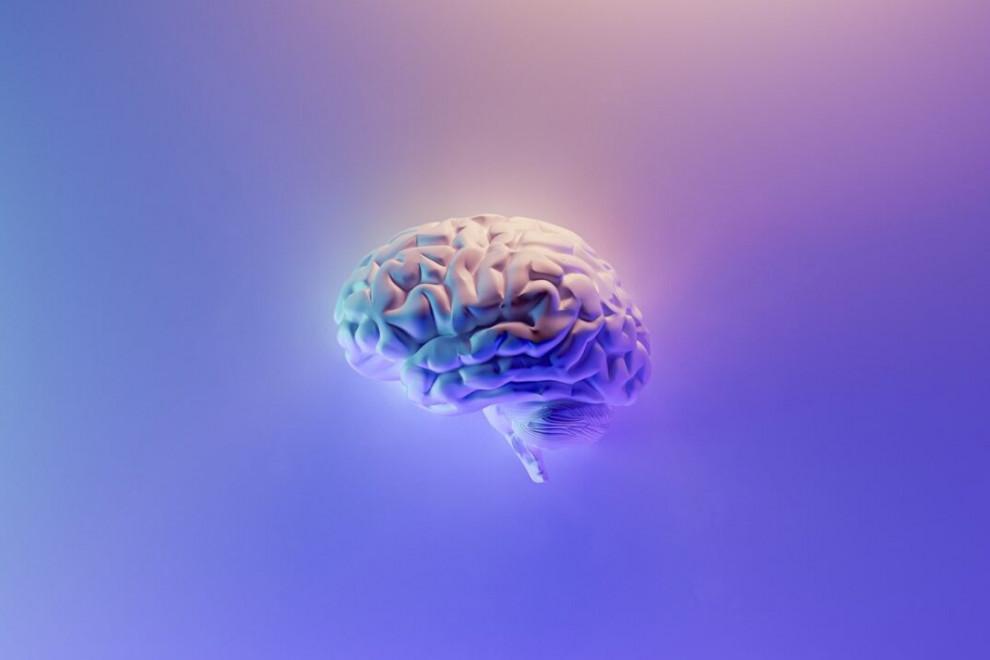 Diferencias cerebro mente