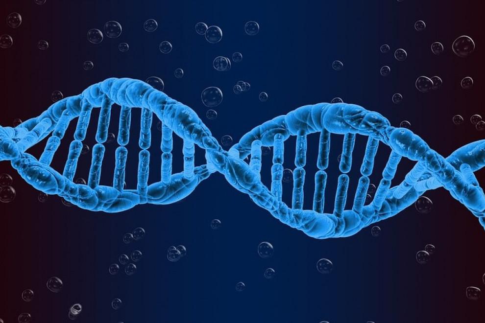 ADN Terapia génica