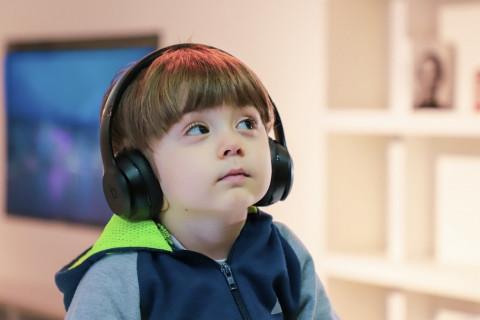 Discapacidad Auditiva, sordera