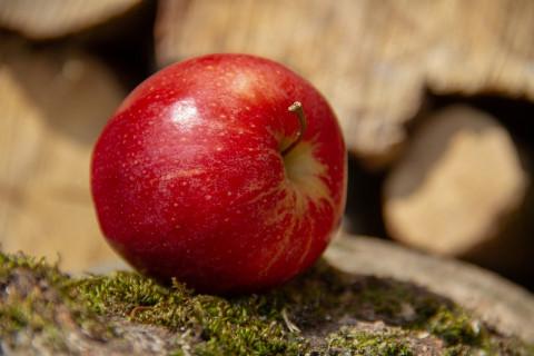 Manzana: 15 propiedades y beneficios de esta saludable fruta